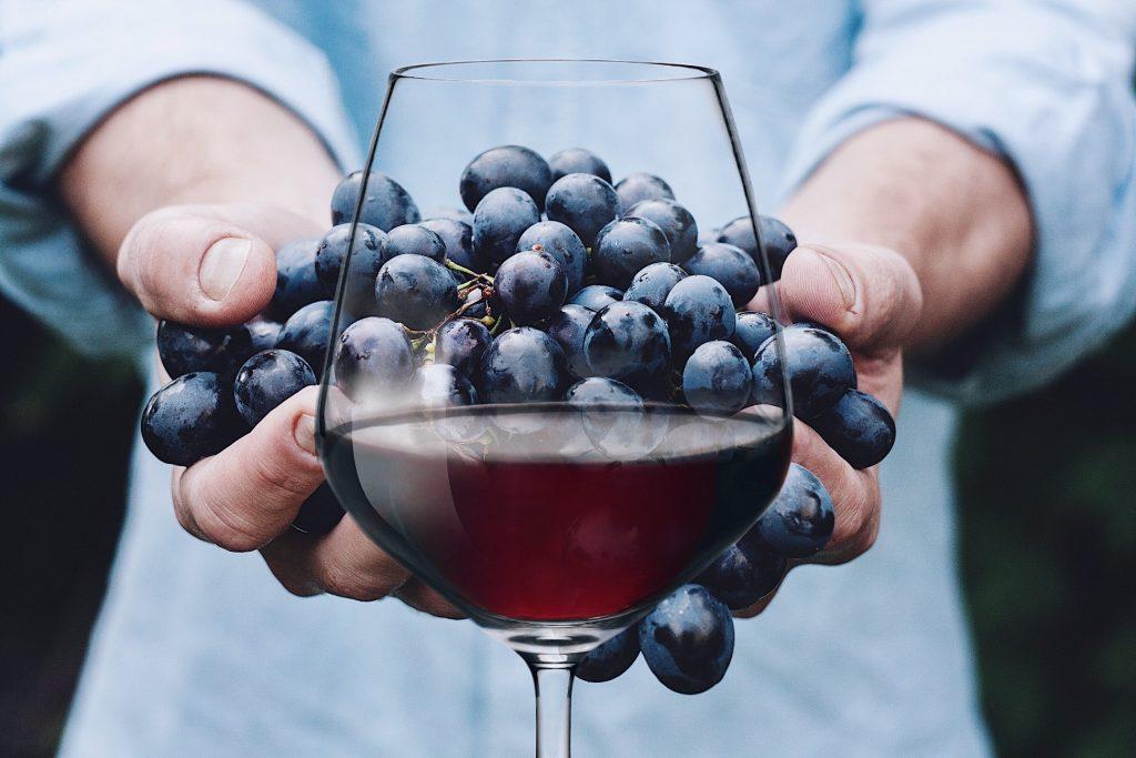cepage-vin